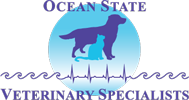 OSVS Logo